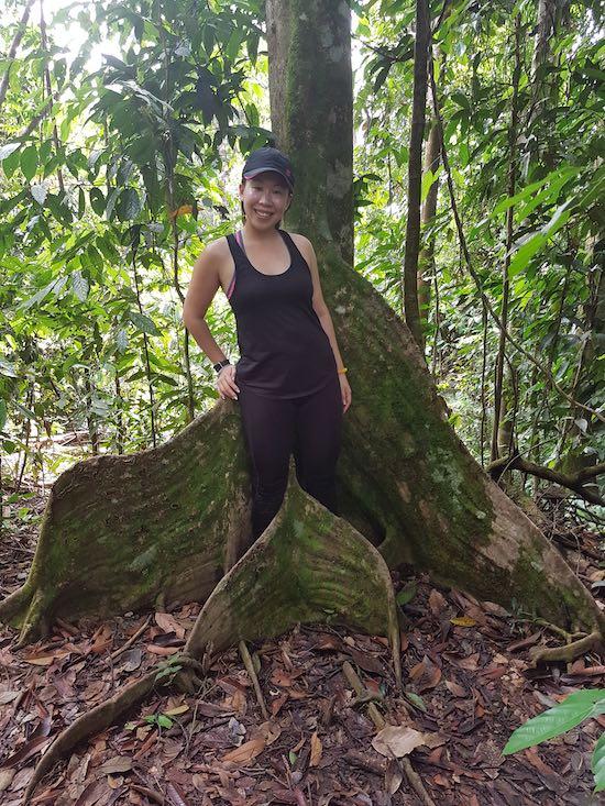 best trekking tour in indonesia