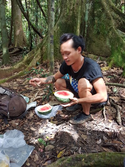 what is all included in the jungle trekking cost
