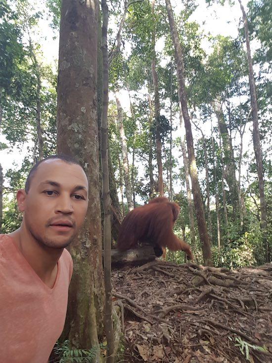 is it safe in bukit lawang