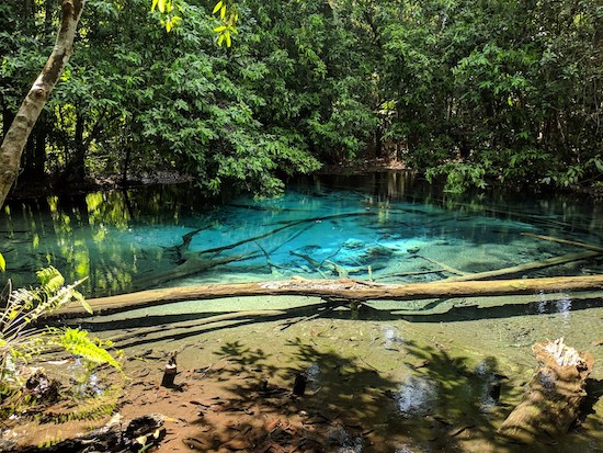 emerald pool krabi guide