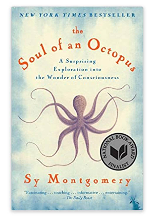 the soul of an octopus is a great scuba diving book to buy as a gift