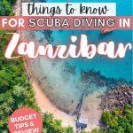 pinterest save image for 5 scuba diving tip in zanzibar