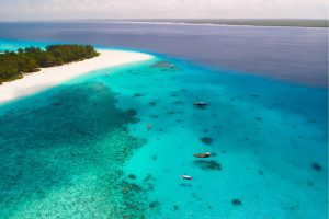 Diving in Zanzibar: 5 Scuba Diving Tips You Need To Know As First-Timers