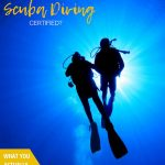 pinnable image for scuba diving beginners guide on the cheap