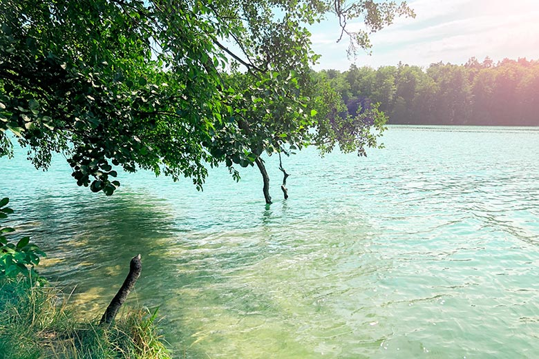 Liepnitzsee: A Day Trip To The Only Turquoise Lake In And Around Berlin