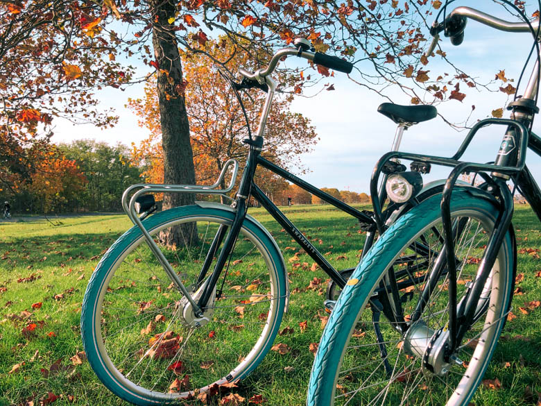 two swapfiets bike rentals with iconic blue tires, standing on a grassy park in Berlin, Germany during autumn