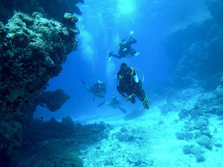 learning to scuba dive in small groups