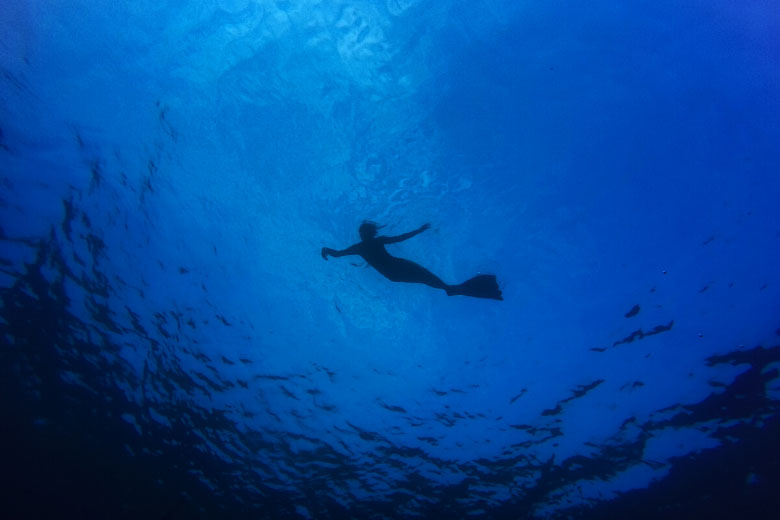 underwater photography of diver floating on the ocean surface