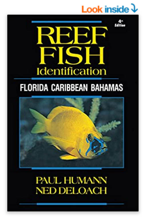 fish identification books for scuba diving