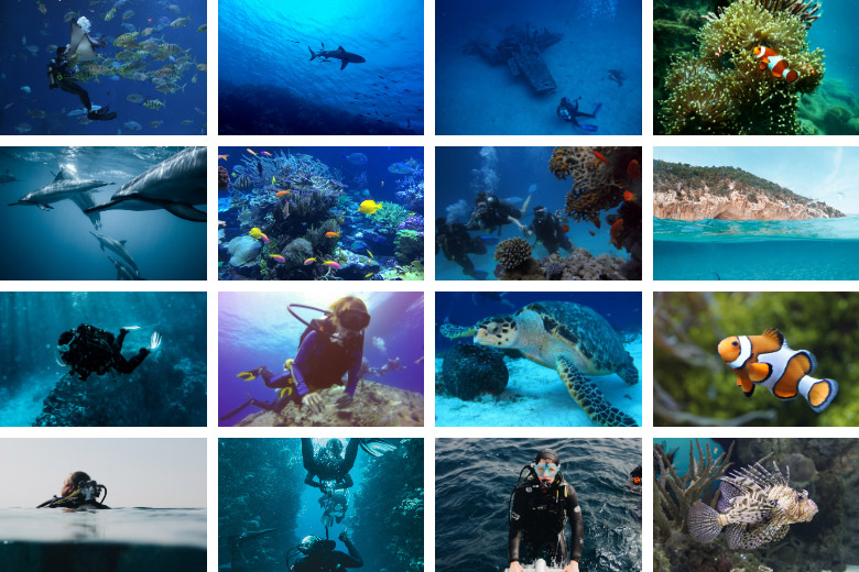 40 Eco-Friendly Scuba Diver Gifts and Gear Ideas To Suit Every Budget