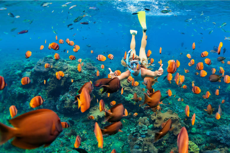 women snorkeling in Zanzibar with a view of coral reefs and lots of orange fish