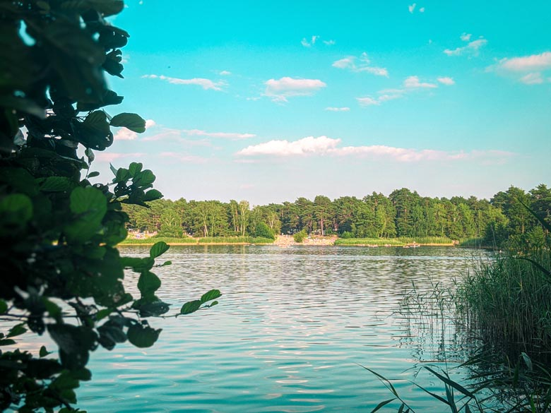 a view over the crystal clear swimming lake of Tonsee amongst the pine trees and the sandy beach area on the other side of the lake