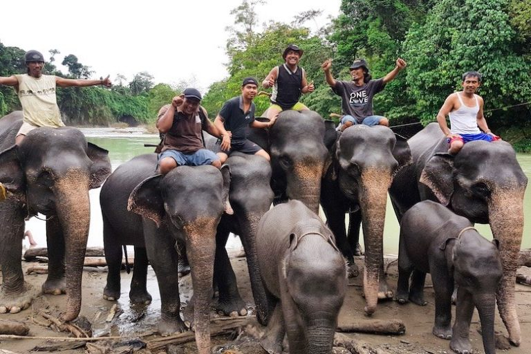 Is Tangkahan Elephant Sanctuary a True and Ethical Sanctuary?